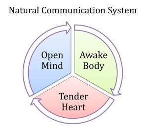 The Natural Communication System